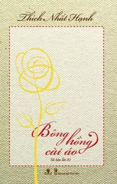 bonghong_cai_ao-bia_1_1__1